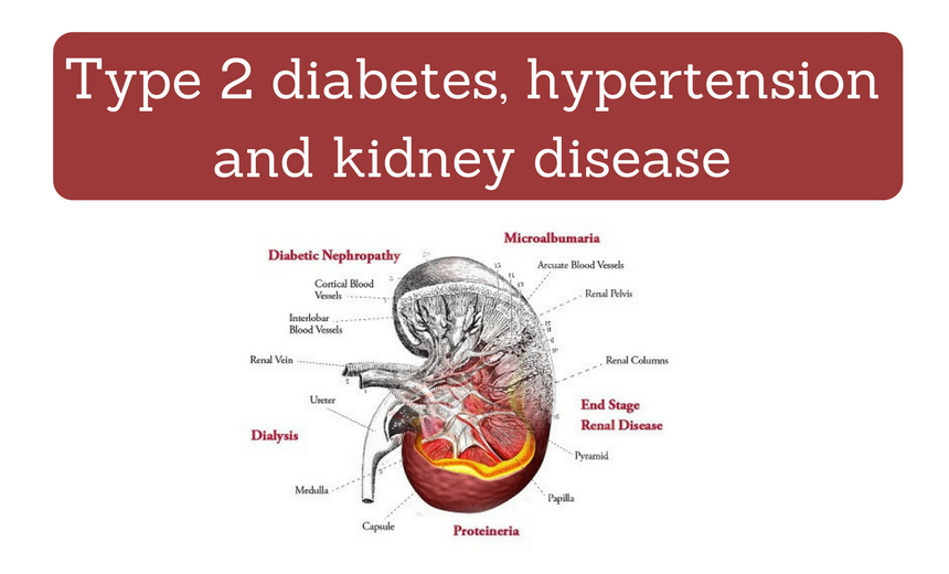 diabetes and chronic kidney disease Chronic kidney disease (ckd)—or chronic renal failure in the united states, the national institute of diabetes and digestive and kidney diseases.