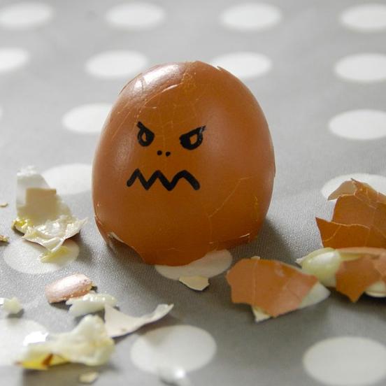 huevo & causalidad